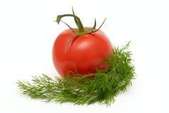 z koperkowy pomidor Zdjęcie Royalty Free