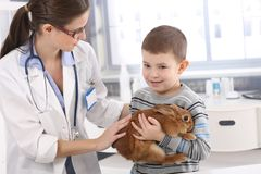 Z królikiem pomaga weterynarza małe dziecko zdjęcia royalty free