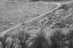 Z kształta pola droga Zdjęcie Stock