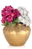 Z kwiatami ceramiczna waza. Zdjęcia Royalty Free