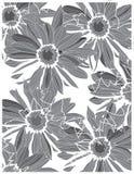 Z kwiatami czarny i biały tło Obrazy Royalty Free