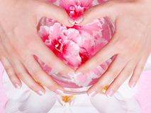 Z kwiatami francuski manicure Zdjęcia Stock