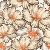 Z kwitnącymi różami romantyczny bezszwowy wzór, Han Obrazy Stock