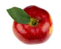 Z liść czerwony jabłko Zdjęcie Stock