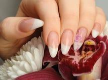 Z manicure'u zbliżeniem żeńskie ręki obrazy royalty free
