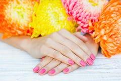 Z menchia manicure'em kobiet ręki zdjęcie royalty free