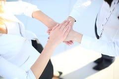 Z mnóstwo różnymi rękami grupowy uścisk dłoni Zdjęcia Royalty Free