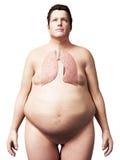 Z nadwagą mężczyzna - płuco Obrazy Royalty Free