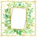 Złocista Geometryczna rama i Greenery Fotografia Stock