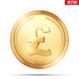 Złocista moneta z funta znakiem Fotografia Royalty Free