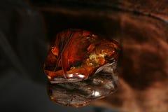 złocisty grzywna Zdjęcia Stock