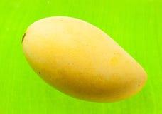 Złocisty mango Zdjęcia Stock