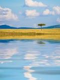 Z odbiciem afrykanina krajobraz Zdjęcie Royalty Free