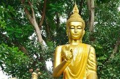 złota Buddha statua Zdjęcie Stock