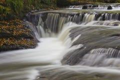 Złota dziury siklawa, Holywell Dene, Northumberland Zdjęcia Royalty Free