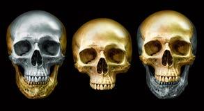 Złota i metal czaszka Fotografia Stock