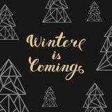 Złota literowanie zima przychodzi i trójboków jedlinowi drzewa na blac Zdjęcie Stock