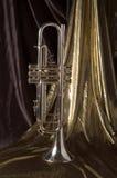 złota, srebra Fotografia Royalty Free