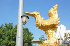 Złote ptasie lampy Fotografia Royalty Free