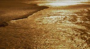złotego morza Fotografia Stock