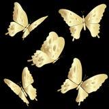 Złoto Koronkowy motyl na czarnym tle Obraz Royalty Free