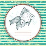 Złoto ryba. Wektor karta. Zdjęcie Stock