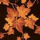 złoto wzorce brown Fotografia Stock
