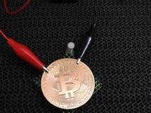 Złoty Bitcoin z aligator klamerkami Zdjęcia Royalty Free