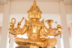 Złoty Brahma Obraz Royalty Free