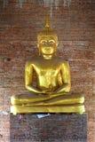 Złoty Buddha stan Obrazy Royalty Free
