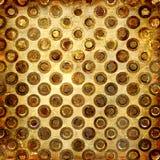złoty crunch Zdjęcia Royalty Free