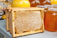Złoty honey4 Fotografia Royalty Free