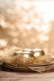 złoty jajka gniazdeczko Obraz Stock