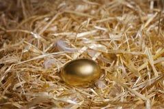 Złoty jajko Zdjęcia Royalty Free