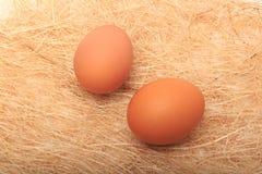 Złoty jajko w prowizorycznym gniazdeczku Na bielu Obraz Stock