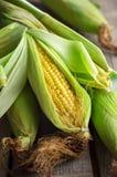 Złoty kukurydzany cob na stole Fotografia Stock