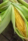Złoty kukurydzany cob na stole obrazy stock