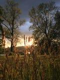 Złoty niebo Obraz Royalty Free