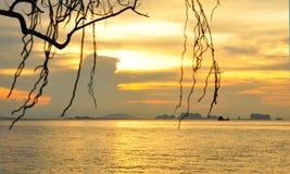 złoty niebo Fotografia Stock