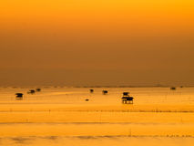 złoty niebo w ranku Zdjęcie Stock