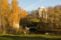 Złoty park Zdjęcia Stock