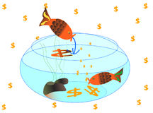 złoty ryb Obraz Royalty Free