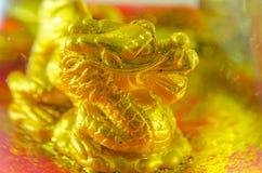 złoty smok Obrazy Stock