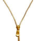 Złoty suwaczek Obrazy Stock