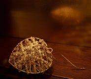 złoty wisiorek Fotografia Royalty Free