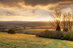Złoty zima ranek, Anglia Zdjęcia Stock