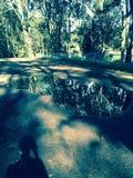 Złotych wrót goomies parkowa przygoda Zdjęcia Royalty Free