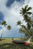 Z palmami tropikalna plaża Fotografia Royalty Free