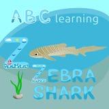Z é para desenhos animados caixas do animal de mar do vetor do tubarão de tigre da fonte da letra Z do tubarão da zebra ou do tub Imagens de Stock