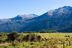 z pewnością malownicza krajobrazu Zdjęcie Royalty Free